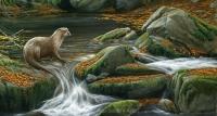 1154-autumn-falls-otter