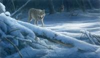 1157-moonlight-wolves