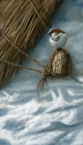 1189-old-thatch-house-sparrow
