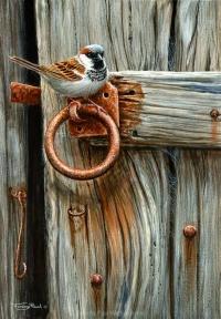 1210-house-sparrow-door