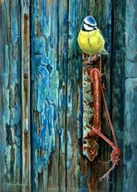 1212-blue-door-blue-tit