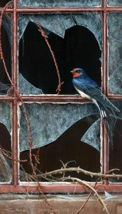 1218-House-hunting---swallow