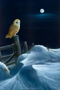 1224scan-Full-moon---barn-owl