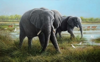 1239-Two Gentlemen, Botswana-elephants-photo
