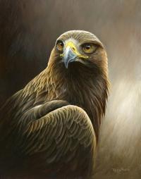 1250-Golden-Eagle