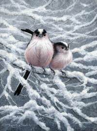 1264-Long-tailed-tits