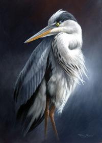 1355-heron