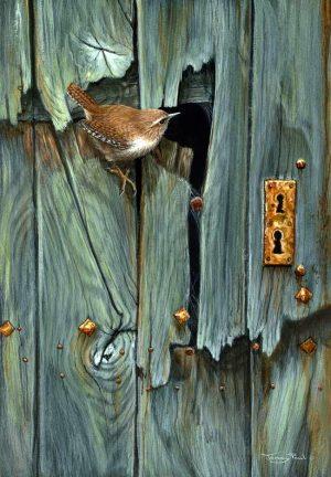 1161 broken door wren
