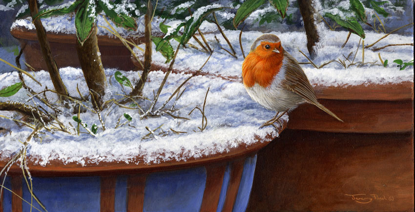 732 winter robin