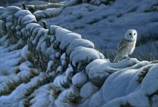1020 winter wall barn owl 22x15