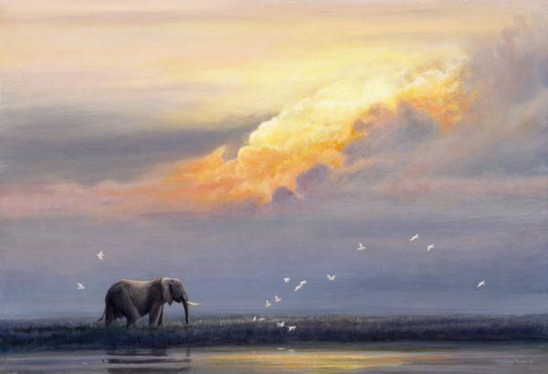 702 zambezi sundown