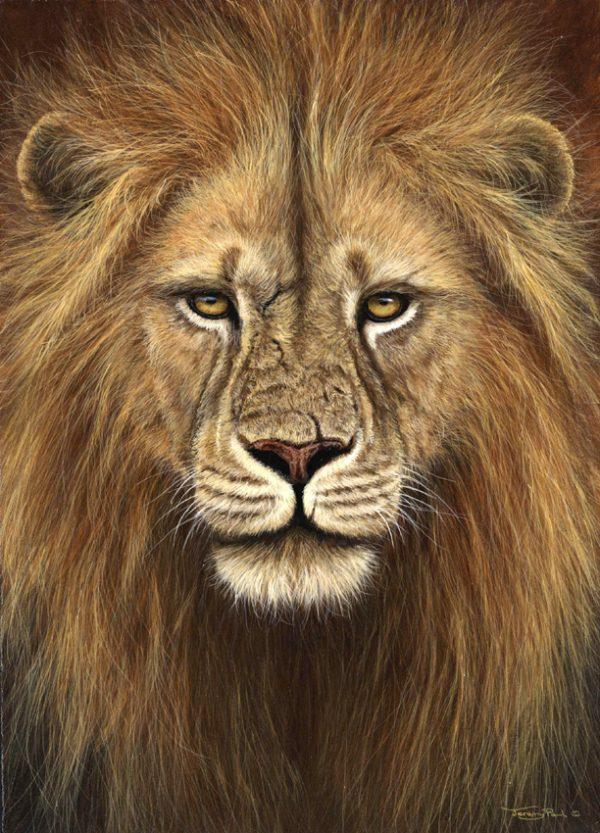 719 lion