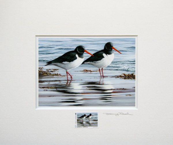 stamp oystercatchers