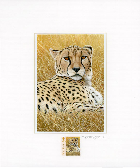 cheetah stamp