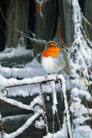 1176 winter barn robin