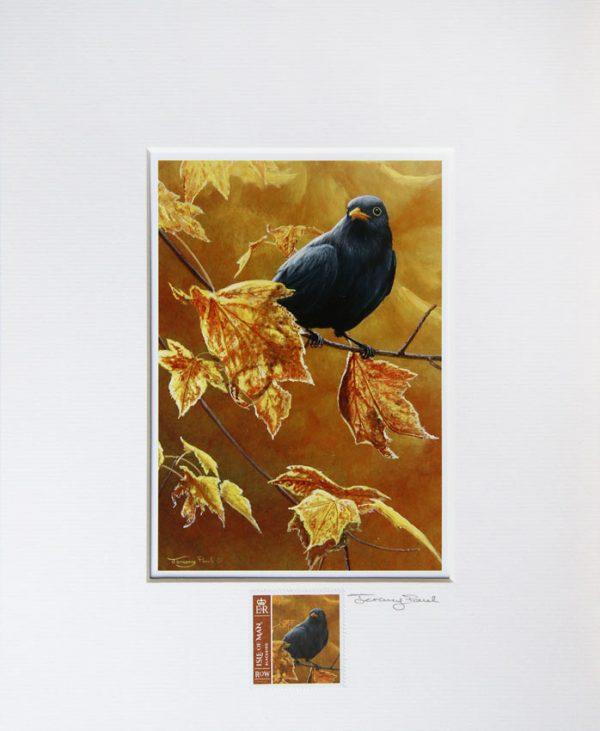 Blackbird a
