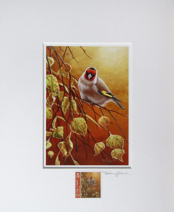 Goldfinch a