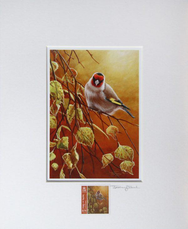 Goldfinch a
