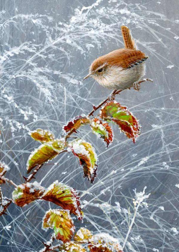 1223 falling snow wren