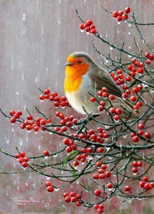 1230 Robin rains