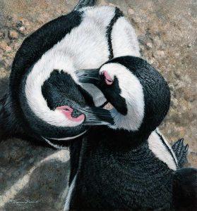 1244 preening penguins