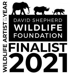 DSWF WAY Badge Finalist m21420