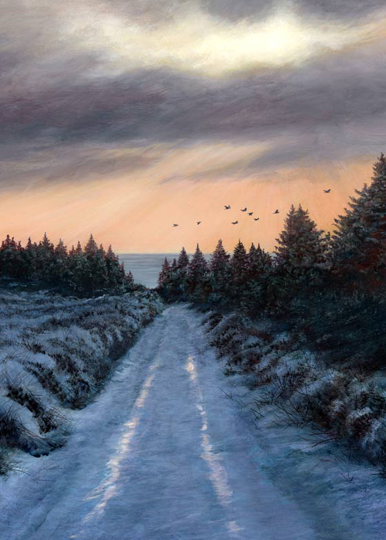 1291 A winters day with jackdaws