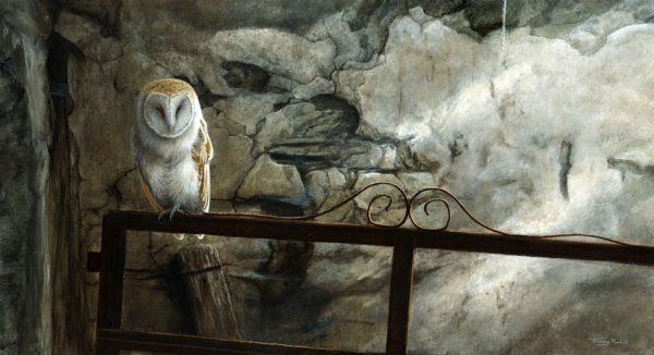 1304 Shadows barn owl 28x15 1