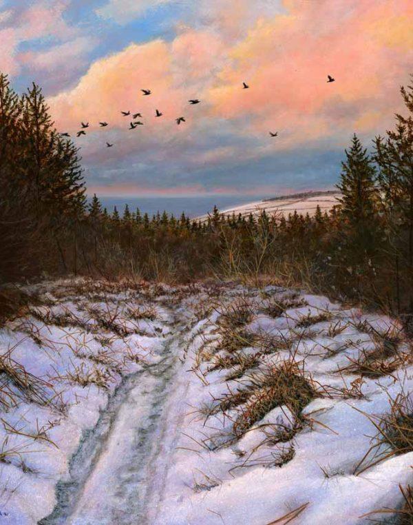 1341 Birds flying high Path to Cringle 20x19print crop