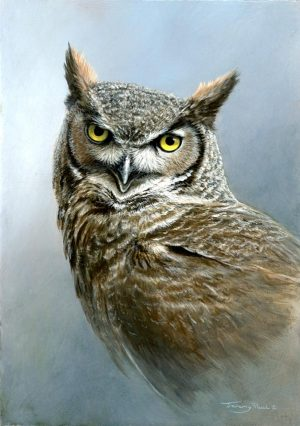 1354 great horned owl 12x9 1